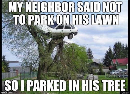 Secure Parking | MY NEIGHBOR SAID NOT TO PARK ON HIS LAWN SO I PARKED IN HIS TREE | image tagged in memes,secure parking | made w/ Imgflip meme maker