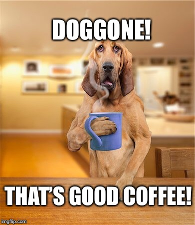 DOGGONE! THAT'S GOOD COFFEE! | made w/ Imgflip meme maker