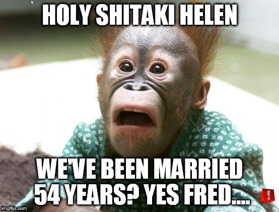 HOLY SHITAKI HELEN WE'VE BEEN MARRIED 54 YEARS? YES FRED.... | image tagged in surprised monkey | made w/ Imgflip meme maker