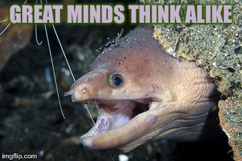 Happy Eel | GREAT MINDS THINK ALIKE | image tagged in happy eel | made w/ Imgflip meme maker