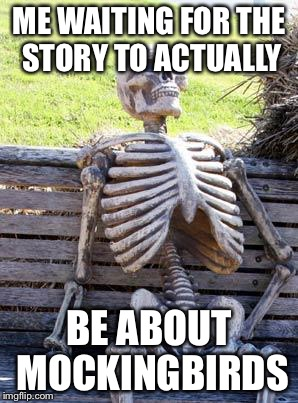 Waiting Skeleton Meme | ME WAITING FOR THE STORY TO ACTUALLY BE ABOUT MOCKINGBIRDS | image tagged in memes,waiting skeleton | made w/ Imgflip meme maker