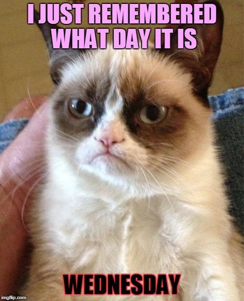 Grumpy Cat Meme | I JUST REMEMBERED WHAT DAY IT IS WEDNESDAY | image tagged in memes,grumpy cat | made w/ Imgflip meme maker