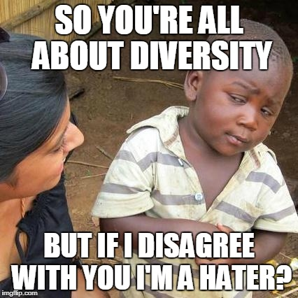 Liberal Logic | SO YOU'RE ALL ABOUT DIVERSITY BUT IF I DISAGREE WITH YOU I'M A HATER? | image tagged in memes,third world skeptical kid | made w/ Imgflip meme maker