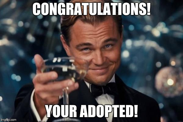 Leonardo Dicaprio Cheers Meme | CONGRATULATIONS! YOUR ADOPTED! | image tagged in memes,leonardo dicaprio cheers | made w/ Imgflip meme maker
