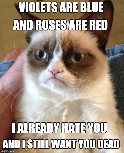 Grumpy Cat Meme | VIOLETS ARE BLUE AND ROSES ARE RED I ALREADY HATE YOU AND I STILL WANT YOU DEAD | image tagged in memes,grumpy cat | made w/ Imgflip meme maker