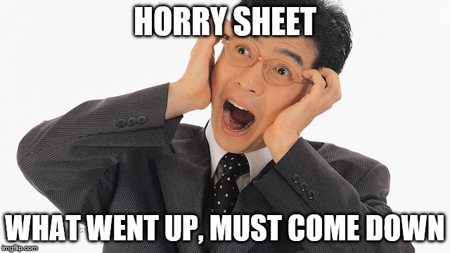 HORRY SHEET WHAT WENT UP, MUST COME DOWN | made w/ Imgflip meme maker