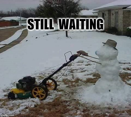 STILL  WAITING | image tagged in spring time in denver | made w/ Imgflip meme maker