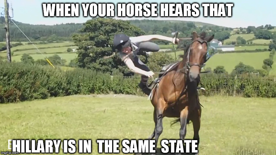 WHEN YOUR HORSE HEARS THAT HILLARY IS IN  THE SAME  STATE | made w/ Imgflip meme maker