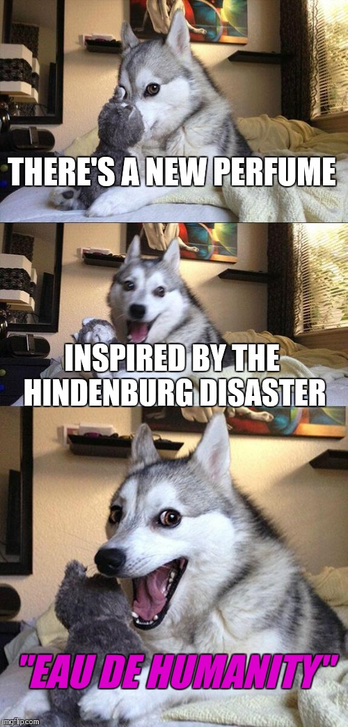 "Bad Pun Dog Meme | THERE'S A NEW PERFUME INSPIRED BY THE HINDENBURG DISASTER ""EAU DE HUMANITY"" 