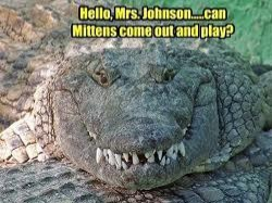 Funny Crocodile | image tagged in funny crocodile,can mittens play | made w/ Imgflip meme maker