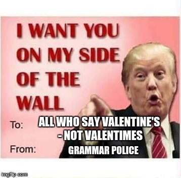 ALL WHO SAY VALENTINE'S - NOT VALENTIMES GRAMMAR POLICE | image tagged in trump wall valentine | made w/ Imgflip meme maker