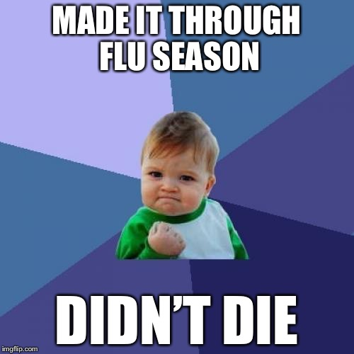 Success Kid Meme | MADE IT THROUGH FLU SEASON DIDN'T DIE | image tagged in memes,success kid | made w/ Imgflip meme maker