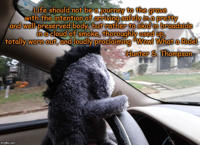 What a Ride | Life should not be a journey to the grave with the intention of arriving safely in a pretty and well preserved body, but rather to skid in b | image tagged in life,adventure time,hunter s thompson | made w/ Imgflip meme maker