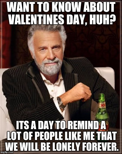 The Most Interesting Man In The World Meme | WANT TO KNOW ABOUT VALENTINES DAY, HUH? ITS A DAY TO REMIND A LOT OF PEOPLE LIKE ME THAT WE WILL BE LONELY FOREVER. | image tagged in memes,the most interesting man in the world | made w/ Imgflip meme maker