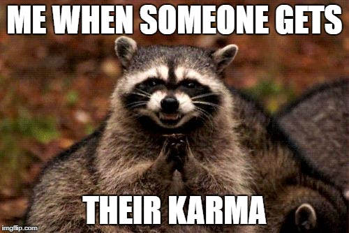 Evil Plotting Raccoon |  ME WHEN SOMEONE GETS; THEIR KARMA | image tagged in memes,evil plotting raccoon | made w/ Imgflip meme maker