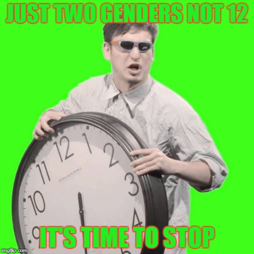 JUST TWO GENDERS NOT 12 IT'S TIME TO STOP | image tagged in it's time to stop | made w/ Imgflip meme maker