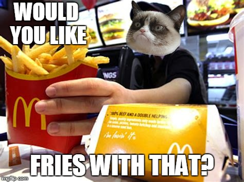 WOULD YOU LIKE FRIES WITH THAT? | made w/ Imgflip meme maker