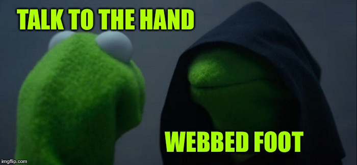 Evil Kermit Meme | TALK TO THE HAND WEBBED FOOT | image tagged in memes,evil kermit | made w/ Imgflip meme maker