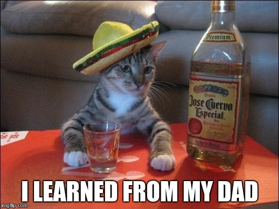 I LEARNED FROM MY DAD | image tagged in tequila cat | made w/ Imgflip meme maker