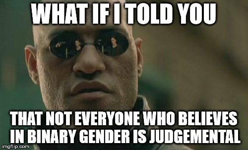 Matrix Morpheus Meme | WHAT IF I TOLD YOU THAT NOT EVERYONE WHO BELIEVES IN BINARY GENDER IS JUDGEMENTAL | image tagged in memes,matrix morpheus | made w/ Imgflip meme maker