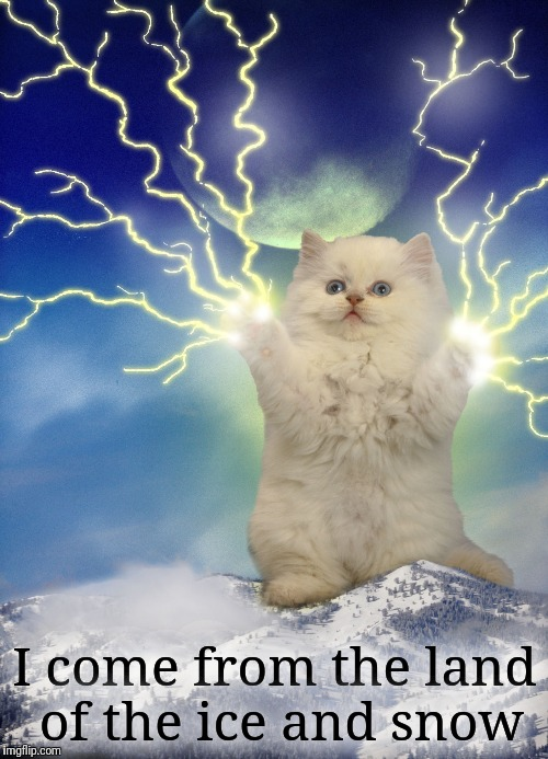 Valhalla, I am coming! | I come from the land of the ice and snow | image tagged in cats,lightning,immigrant song,led zeppelin,valhalla,vikings | made w/ Imgflip meme maker