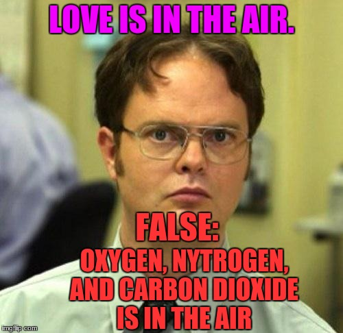 VALENTINES DAY IS NEAR!!! |  LOVE IS IN THE AIR. FALSE:; OXYGEN, NYTROGEN, AND CARBON DIOXIDE IS IN THE AIR | image tagged in false,valentines day,love,carbon dioxide,memes,funny | made w/ Imgflip meme maker