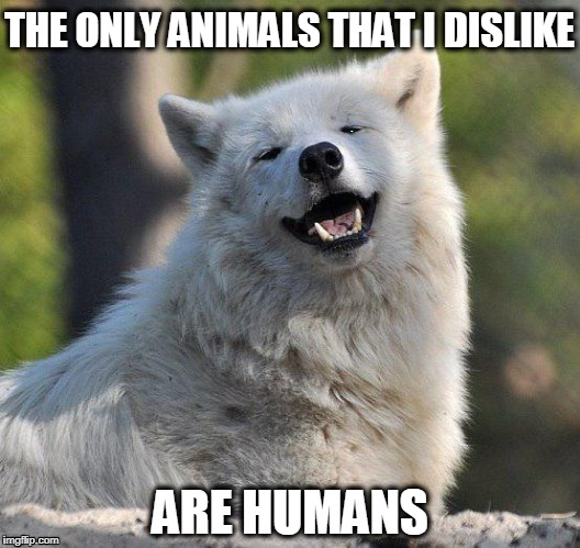 THE ONLY ANIMALS THAT I DISLIKE ARE HUMANS | image tagged in supersecretwolf | made w/ Imgflip meme maker