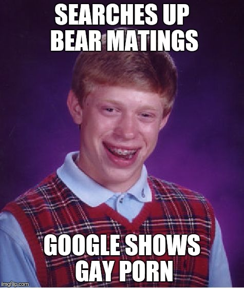That's what you get for clicking I'm feeling lucky. | SEARCHES UP BEAR MATINGS GOOGLE SHOWS GAY PORN | image tagged in memes,bad luck brian | made w/ Imgflip meme maker