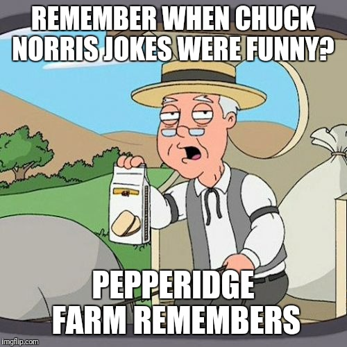 Pepperidge Farm Remembers | REMEMBER WHEN CHUCK NORRIS JOKES WERE FUNNY? PEPPERIDGE FARM REMEMBERS | image tagged in memes,pepperidge farm remembers | made w/ Imgflip meme maker