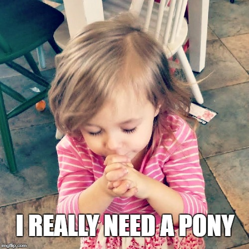 Girl needs a pony | I REALLY NEED A PONY | image tagged in prayer,girl,pony,cute,help | made w/ Imgflip meme maker