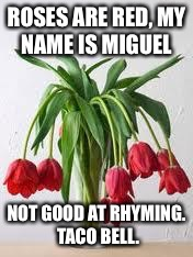 Wilted Flowers | ROSES ARE RED, MY NAME IS MIGUEL NOT GOOD AT RHYMING.  TACO BELL. | image tagged in wilted flowers | made w/ Imgflip meme maker