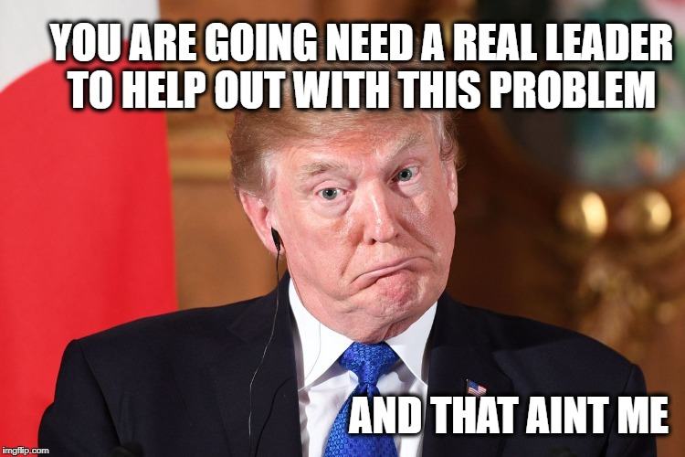 Trump dumbfounded | YOU ARE GOING NEED A REAL LEADER TO HELP OUT WITH THIS PROBLEM AND THAT AINT ME | image tagged in trump dumbfounded | made w/ Imgflip meme maker