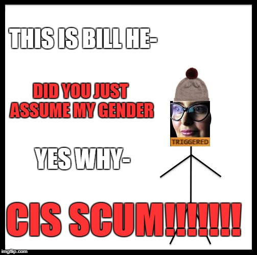 Be Like Bill Meme | THIS IS BILL HE- DID YOU JUST ASSUME MY GENDER YES WHY- CIS SCUM!!!!!!! | image tagged in memes,be like bill | made w/ Imgflip meme maker