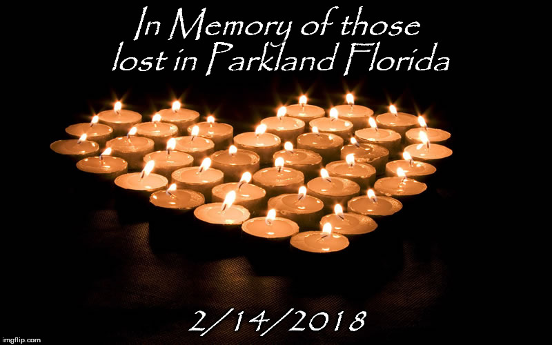 In Memory | In Memory of those lost in Parkland Florida 2/14/2018 | image tagged in florida | made w/ Imgflip meme maker