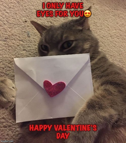 I ONLY HAVE EYES FOR YOU | image tagged in valentine wishes | made w/ Imgflip meme maker