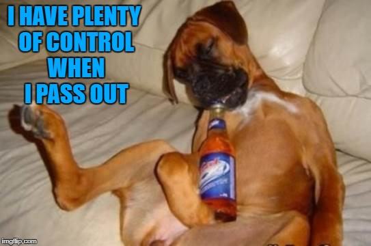 I HAVE PLENTY OF CONTROL WHEN I PASS OUT | made w/ Imgflip meme maker