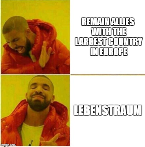 Drake Hotline approves | REMAIN ALLIES WITH THE LARGEST COUNTRY IN EUROPE LEBENSTRAUM | image tagged in drake hotline approves | made w/ Imgflip meme maker