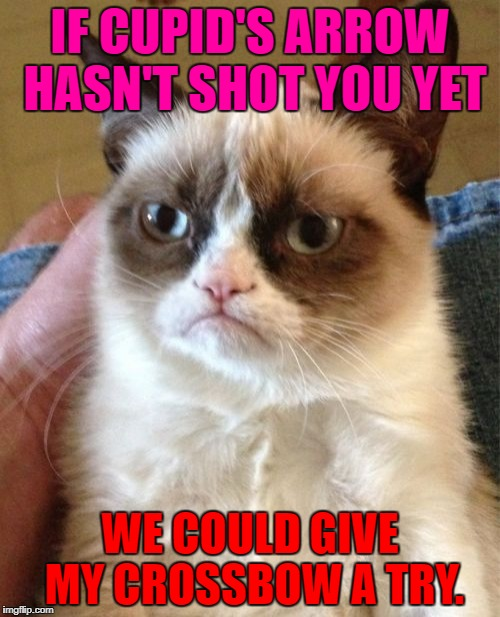Happy Valentine's Day IMGFLIP! | IF CUPID'S ARROW HASN'T SHOT YOU YET WE COULD GIVE MY CROSSBOW A TRY. | image tagged in memes,grumpy cat,valentine's day,valentines,valentines day,funny | made w/ Imgflip meme maker
