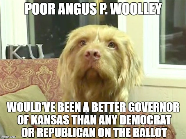 POOR ANGUS P. WOOLLEY WOULD'VE BEEN A BETTER GOVERNOR OF KANSAS THAN ANY DEMOCRAT OR REPUBLICAN ON THE BALLOT | image tagged in angus p woolley | made w/ Imgflip meme maker