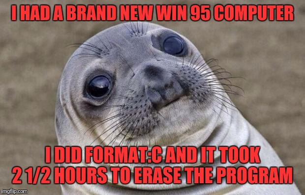Awkward Moment Sealion Meme | I HAD A BRAND NEW WIN 95 COMPUTER I DID FORMAT:C AND IT TOOK 2 1/2 HOURS TO ERASE THE PROGRAM | image tagged in memes,awkward moment sealion | made w/ Imgflip meme maker