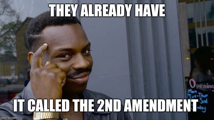 Roll Safe Think About It Meme | THEY ALREADY HAVE IT CALLED THE 2ND AMENDMENT | image tagged in memes,roll safe think about it | made w/ Imgflip meme maker