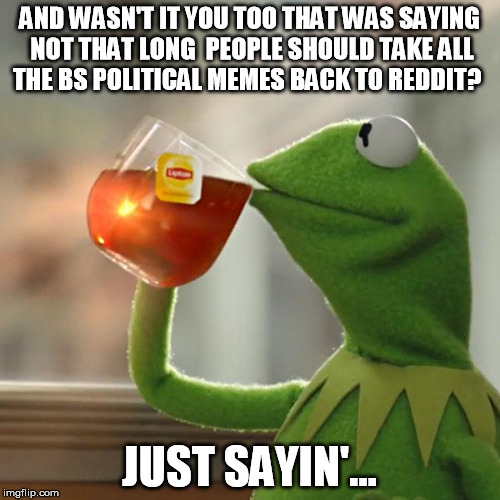 But Thats None Of My Business Meme | AND WASN'T IT YOU TOO THAT WAS SAYING NOT THAT LONG  PEOPLE SHOULD TAKE ALL THE BS POLITICAL MEMES BACK TO REDDIT? JUST SAYIN'... | image tagged in memes,but thats none of my business,kermit the frog | made w/ Imgflip meme maker