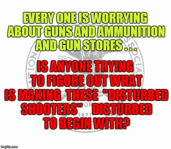 "EVERY ONE IS WORRYING ABOUT GUNS AND AMMUNITION AND GUN STORES . . . IS ANYONE TRYING TO FIGURE OUT WHAT IS MAKING  THESE  ""DISTURBED SHOOTE 