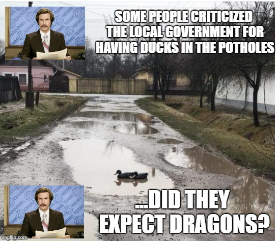 SOME PEOPLE CRITICIZED THE LOCAL GOVERNMENT FOR HAVING DUCKS IN THE POTHOLES ...DID THEY EXPECT DRAGONS? | image tagged in ron burgundy | made w/ Imgflip meme maker