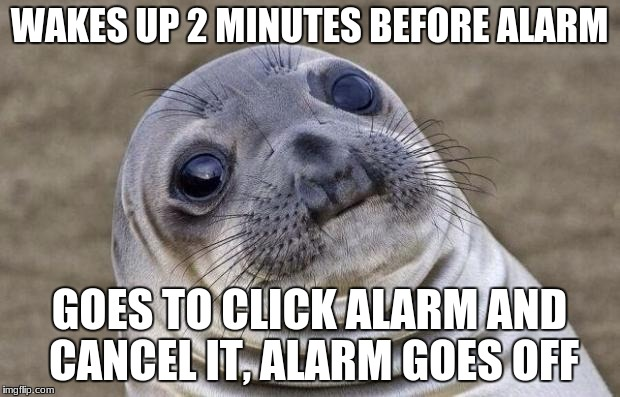 surprised sea lion | WAKES UP 2 MINUTES BEFORE ALARM GOES TO CLICK ALARM AND CANCEL IT, ALARM GOES OFF | image tagged in memes,awkward moment sealion | made w/ Imgflip meme maker