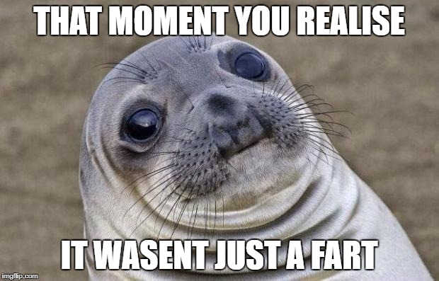 Awkward Moment Sealion Meme | THAT MOMENT YOU REALISE IT WASENT JUST A FART | image tagged in memes,awkward moment sealion | made w/ Imgflip meme maker