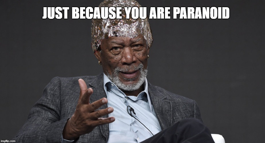 Right Tin Foil | JUST BECAUSE YOU ARE PARANOID | image tagged in right tin foil | made w/ Imgflip meme maker