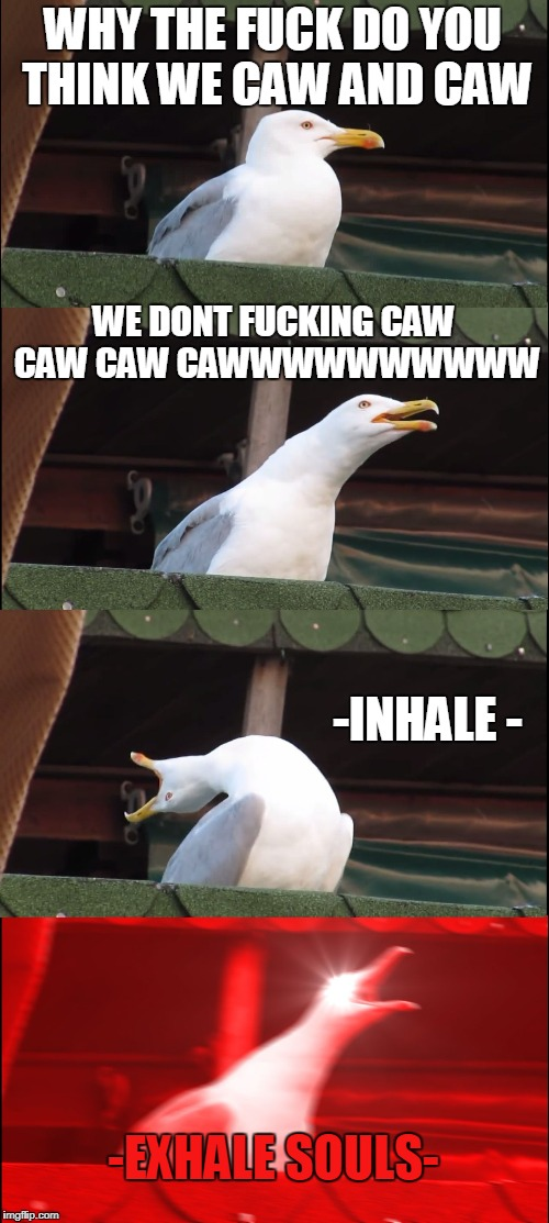 Cawing little shit | WHY THE F**K DO YOU THINK WE CAW AND CAW WE DONT F**KING CAW CAW CAW CAWWWWWWWWWW -INHALE - -EXHALE SOULS- | image tagged in memes,inhaling seagull | made w/ Imgflip meme maker