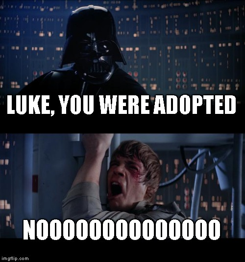 Star Wars No Meme | LUKE, YOU WERE ADOPTED NOOOOOOOOO0OOOO | image tagged in memes,star wars no | made w/ Imgflip meme maker