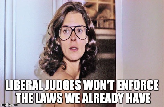 Jobeth Williams | LIBERAL JUDGES WON'T ENFORCE THE LAWS WE ALREADY HAVE | image tagged in jobeth williams | made w/ Imgflip meme maker